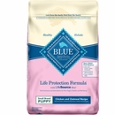 Blue Buffalo Life Protection Small Breed Puppy - Chicken & Oatmeal (15 lb)