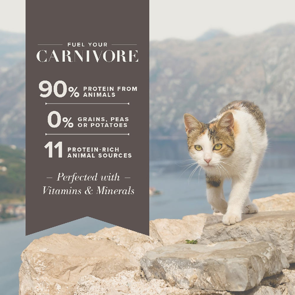 BLUE-CARNIVORA-COASTAL-BLEND-GRAIN-FREE-ADULT-CATS-10LB