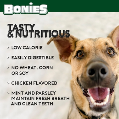 BONIES-DENTAL-BONES-REGULAR-15