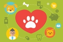 Budget Pet Care: How to Care for Your Pet More- For Less