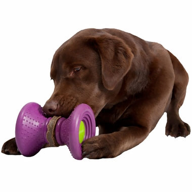BUSY-BUDDY-ULTRA-WOOFER-SMALL