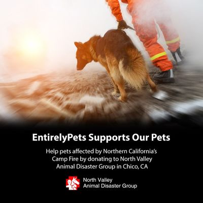 California Camp Wildfire Donation Matching Campaign from EntirelyPets