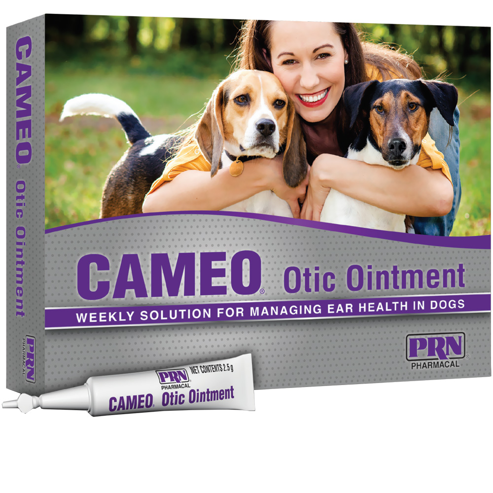 Cameo Otic Ointment (8 x 2.5g tubes) im test