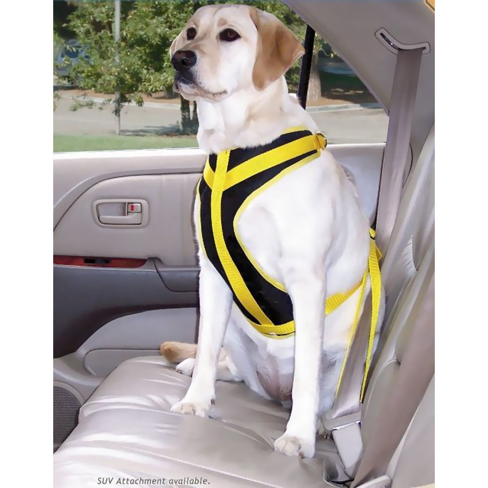 Canine Auto Safety Harness im test