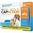 CapAction for Dogs