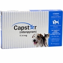 CAPSTAR Blue for Dogs or Cats 2-25 lbs (6 tablets)