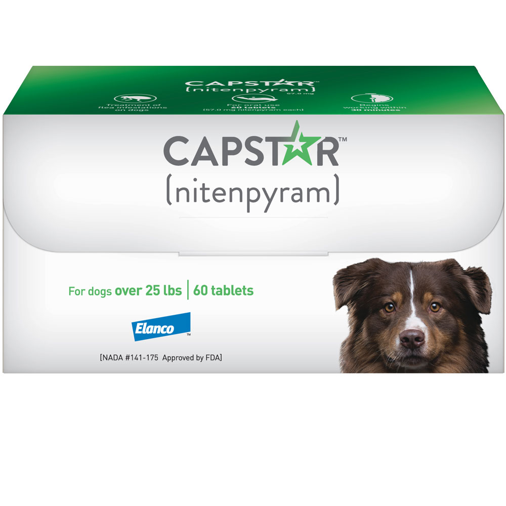Capstar Flea Control for Dogs Over 25 lbs (60 Tablets) im test