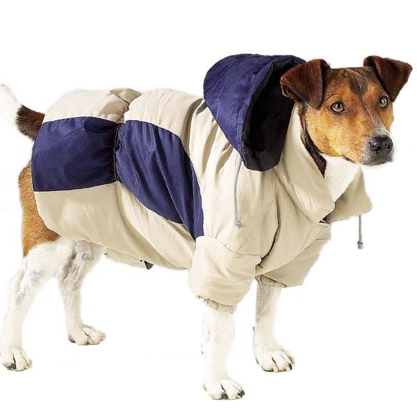 Casual Canine Base Camp Parkas