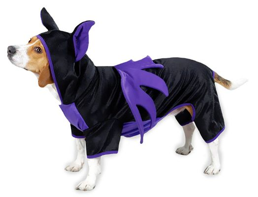 Image of Casual Canine Bat Dog Costume Purple from EntirelyPets