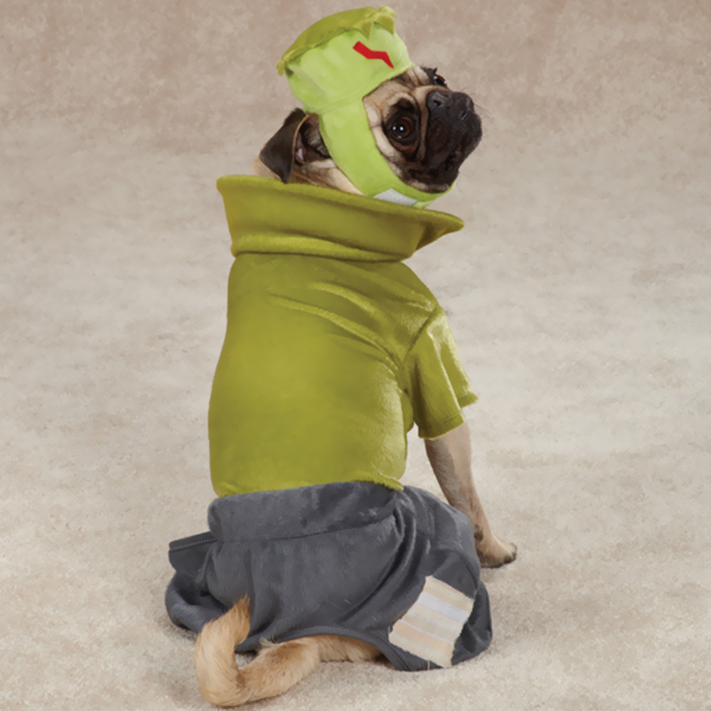 CASUAL-CANINE-FRANKENHOUND-COSTUME-GREEN-SMALL