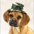 """Casual Canine Green Camo Bucket Hat Large (7"""")"""