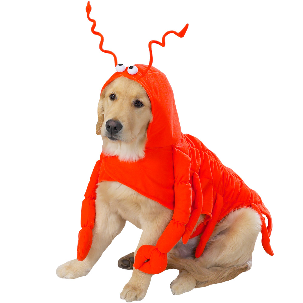 LOBSTERMED