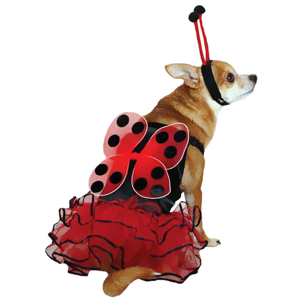 CASUAL-CANINE-LUCKY-BUG-COSTUME-RED-SMALL
