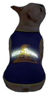 CASUAL-CANINE-WITCH-IN-TRAINING-TEE-PURPLE-SMALL