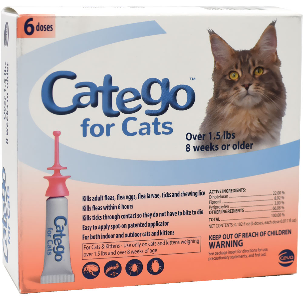 Catego for Cats +1.5 lbs 6-pack im test