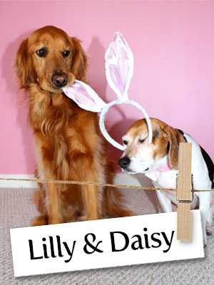Check Out This Adorable & Talented Duo: Lilly and Daisy!