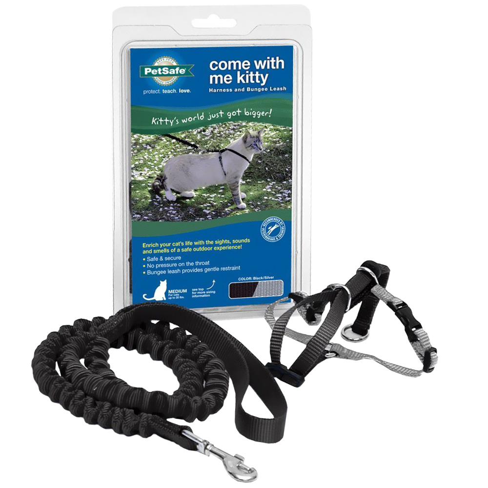 Come with Me Kitty Harness & Bungee Leash - LARGE/BLACK im test