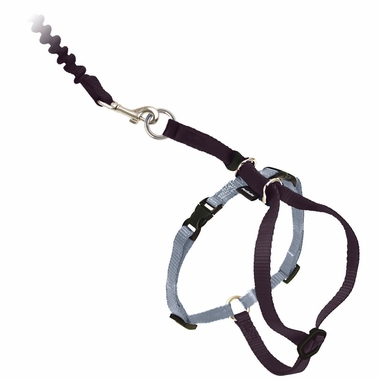COME-WITH-ME-KITTY-HARNESS-BUNGEE-LEASH-LARGE-BLACK