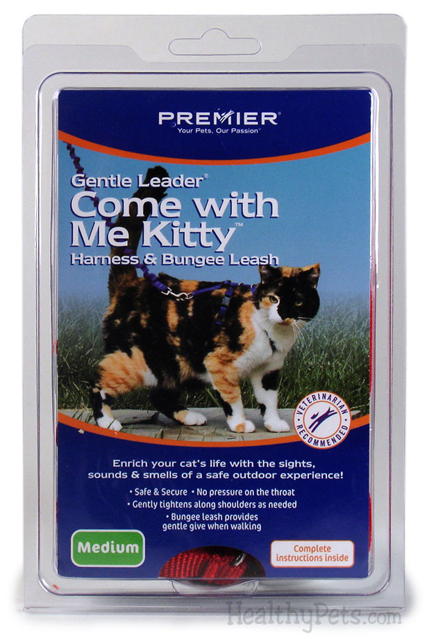 Come with Me Kitty Harness & Bungee Leash - MEDIUM / ROYAL BLUE im test