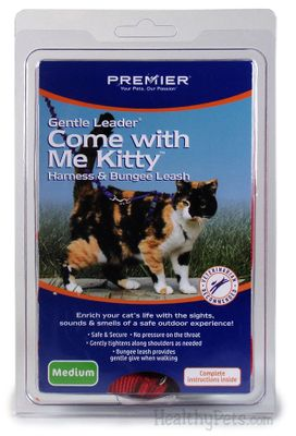 Image of Come with Me Kitty Harness & Bungee Leash - Medium / ROYAL BLUE from EntirelyPets