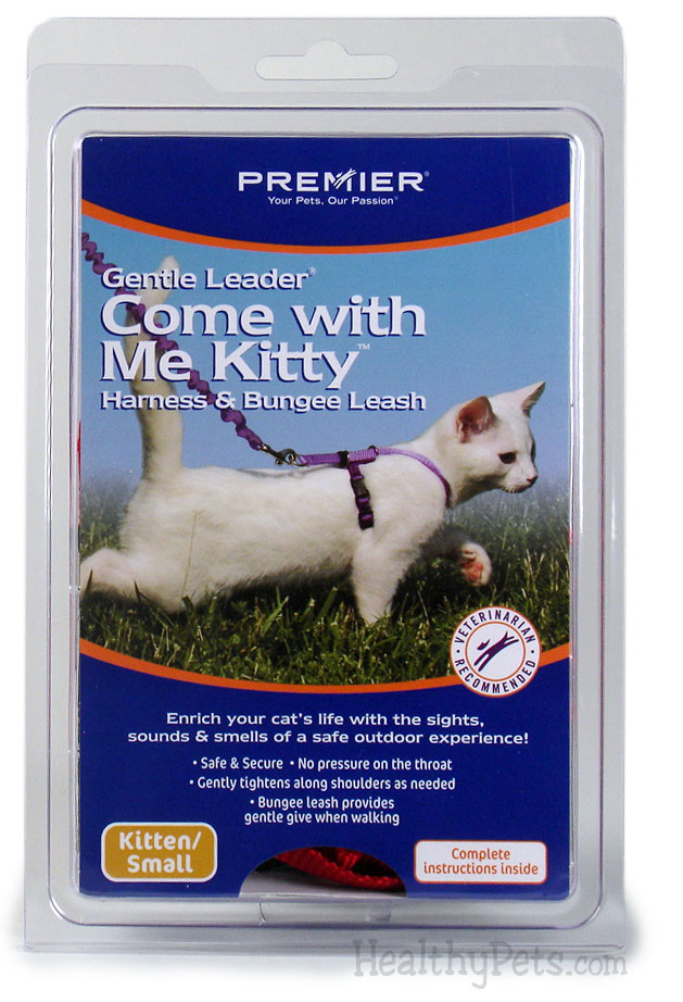 Come with Me Kitty Harness & Bungee Leash - SMALL / ROYAL BLUE im test