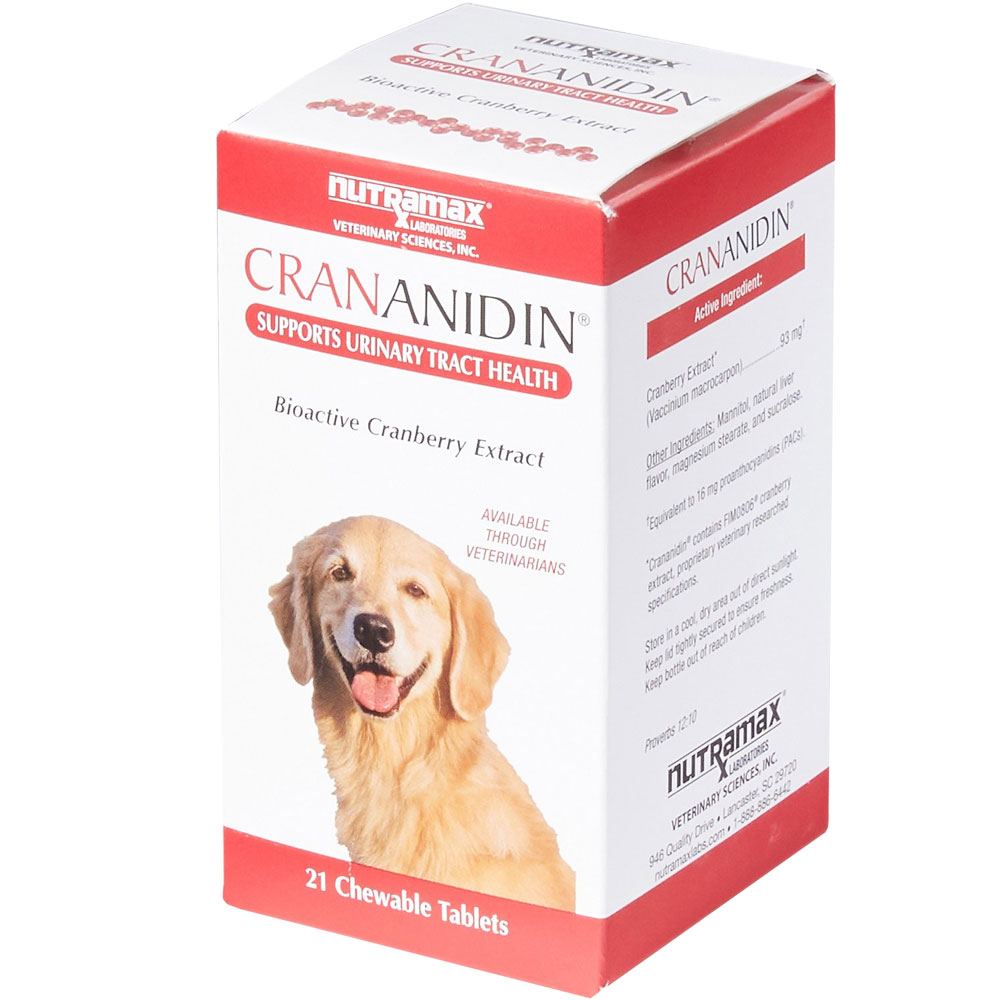 Crananidin Urinary Tract Support (21 Chewable Tablets) im test