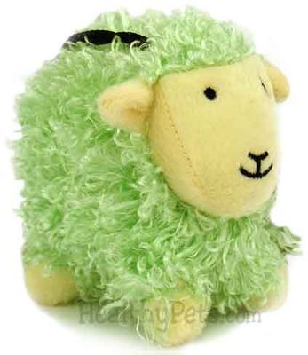 Curly Pet - Green