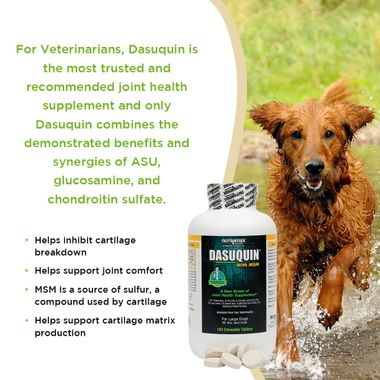 DASUQUIN-FOR-LARGE-DOGS-60-LBS-OVER-WITH-MSM-3-PACK-450-CHEWS