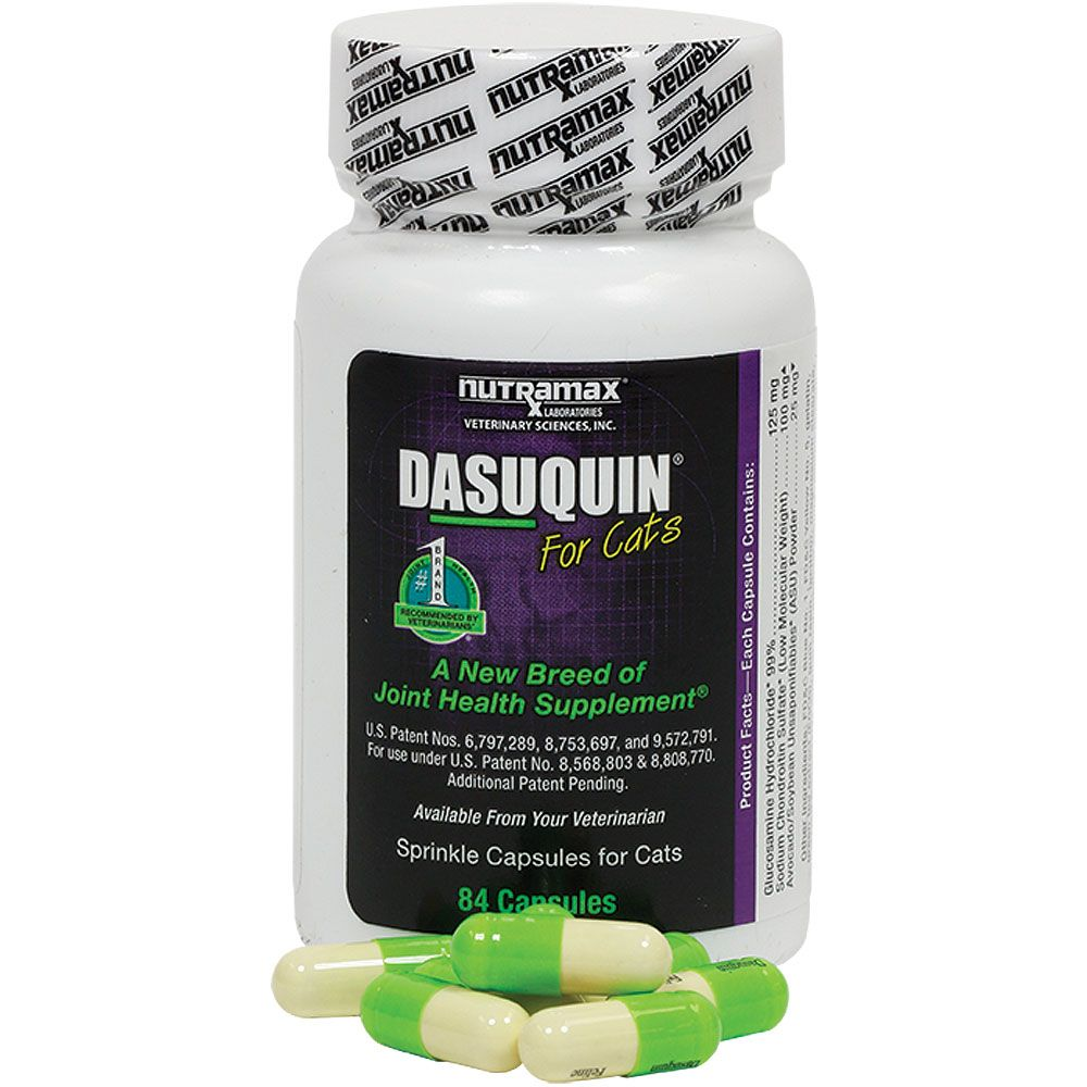Dasuquin for Cats (84 Caps) im test