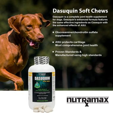 DASUQUIN-FOR-LARGE-DOGS-60-LBS-OVER-WITH-MSM-150-CHEWS