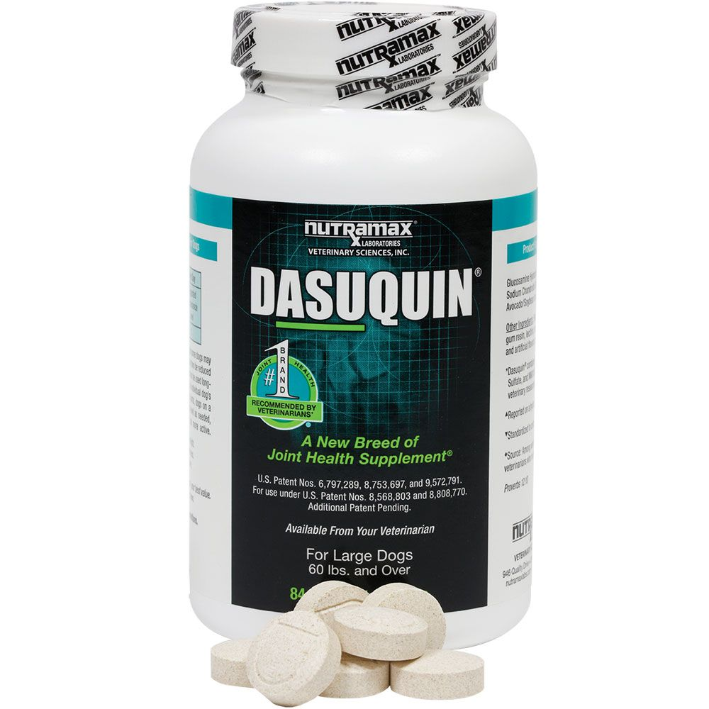 Image of Dasuquin for Large Dogs (84 Chewable Tabs)