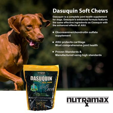 DASUQUIN-SOFT-CHEWS-FOR-LARGE-DOGS-WITH-MSM-150-CHEWS