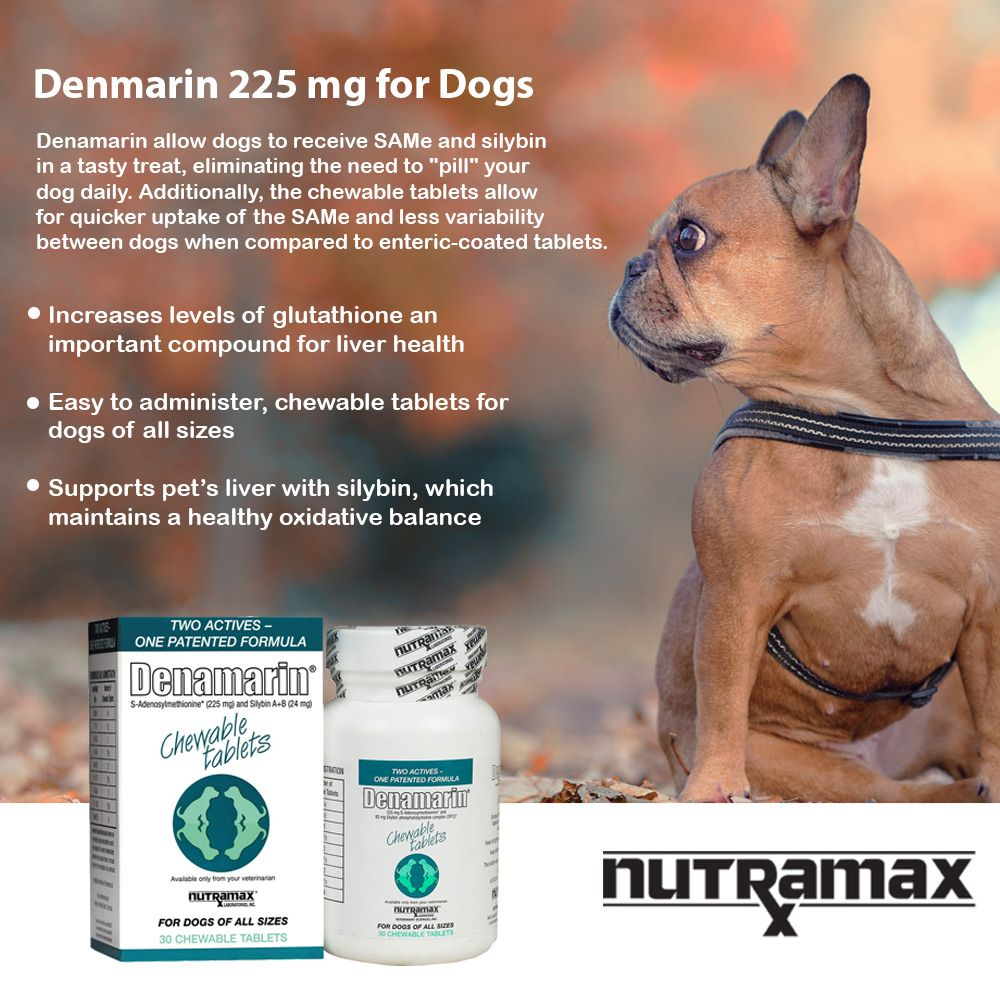 DENAMARIN-225-MG-FOR-DOGS-OF-ALL-SIZES-30-TABS