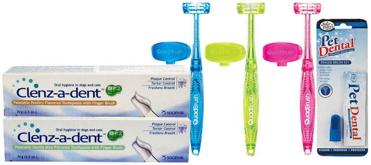 Dental Toothbrushes for Cats