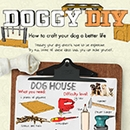 DIY Projects For Dog Owners