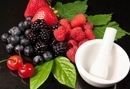 Does Your Dog Need Antioxidants?