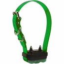 Dogtra EDGE Receiver - Green