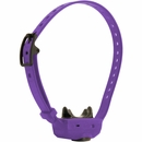 Dogtra iQ CLiQ Additional Receiver - Purple