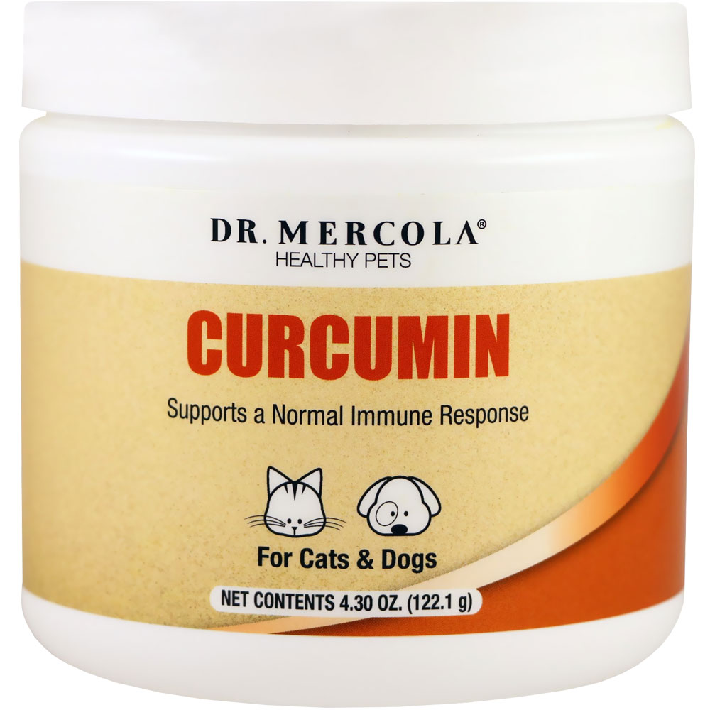Dr. Mercola Curcumin for Cats & Dogs - 4.30 oz - from EntirelyPets