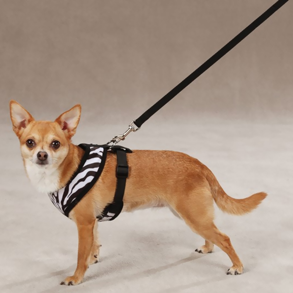 EAST-SIDE-COLLECTION-PLUSH-PRINT-HARNESS-ZEBRA-SMALL
