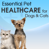 Essential Pet Healthcare for Dogs & Cats