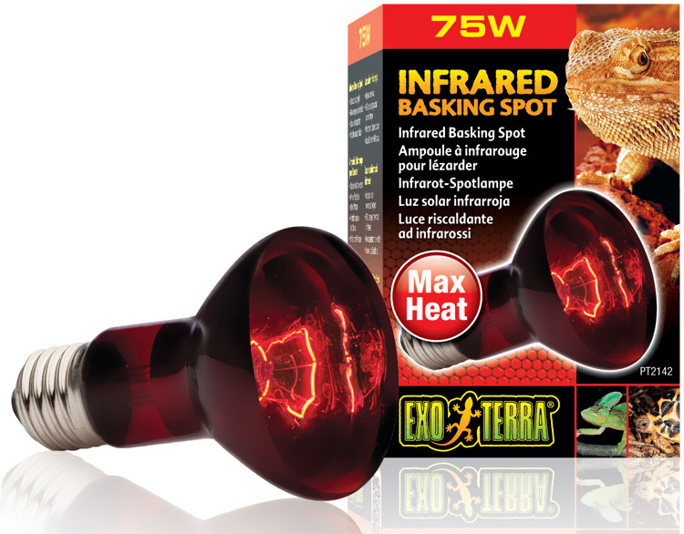 Exo Terra Heat Glo Infrared Spot Lamp 75 W On Sale Entirelypets
