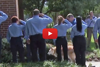 Firefighters Salute The Last 9/11 Search And Rescue Dog