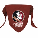 Florida State Dog Bandanas