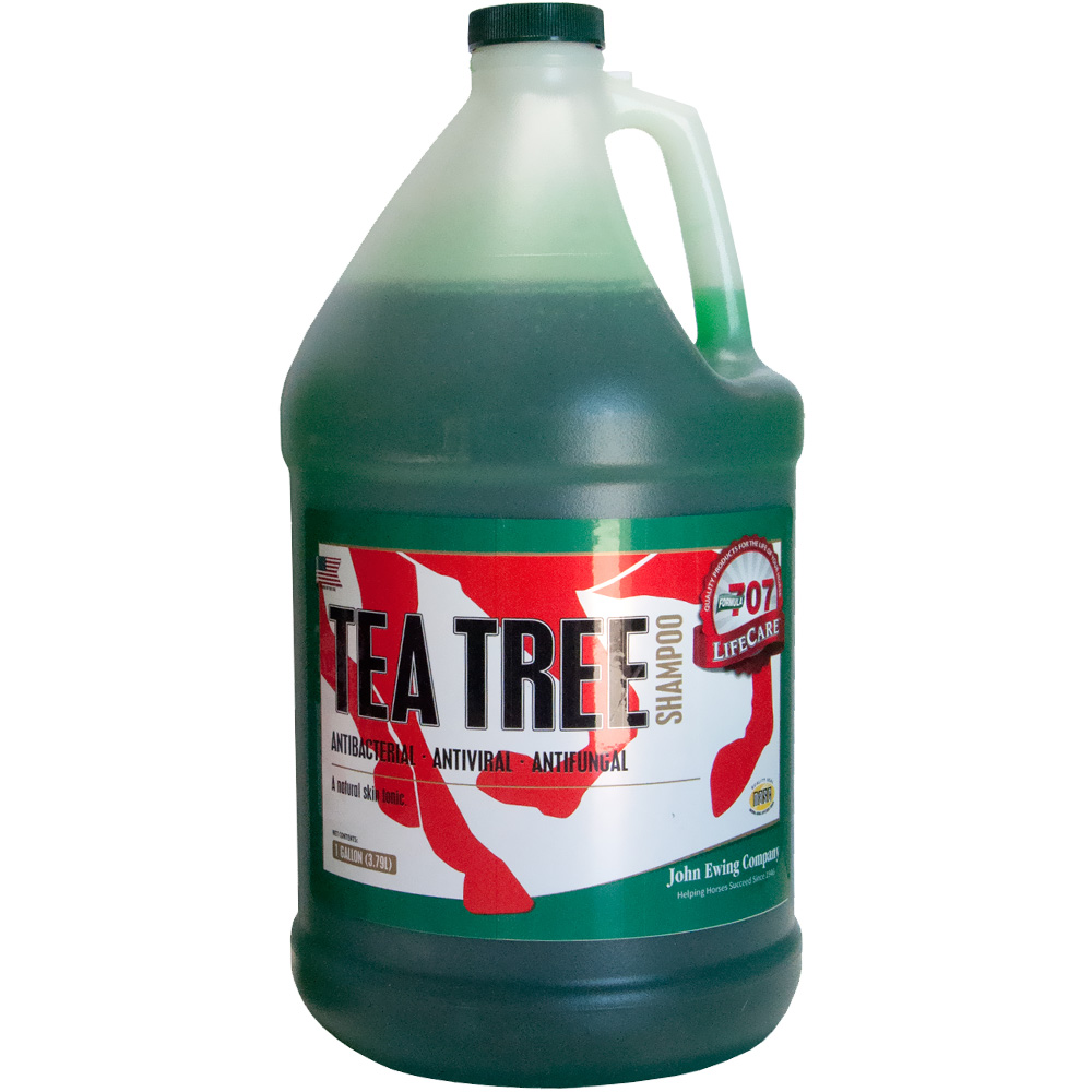 FORMULA-707-LIFECARE-TEA-TREE-SHAMPOO-GALLON