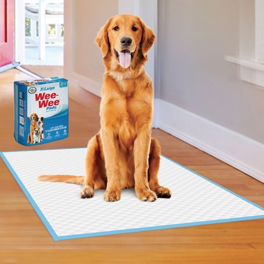 FOUR-PAWS-WEE-WEE-PADS-21-COUNT-XLARGE