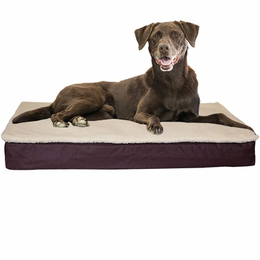 FURHAVEN-CONVERTIBLE-ORTHOPEDIC-BED-ESPRESSO-MEDIUM