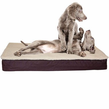 FURHAVEN-CONVERTIBLE-ORTHOPEDIC-BED-ESPRESSO-SMALL