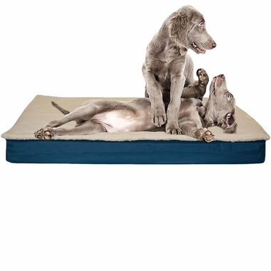 FURHAVEN-CONVERTIBLE-ORTHOPEDIC-BED-BLUE-MEDIUM