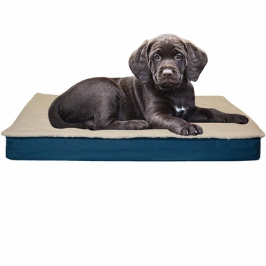 FURHAVEN-CONVERTIBLE-ORTHOPEDIC-BED-BLUE-SMALL